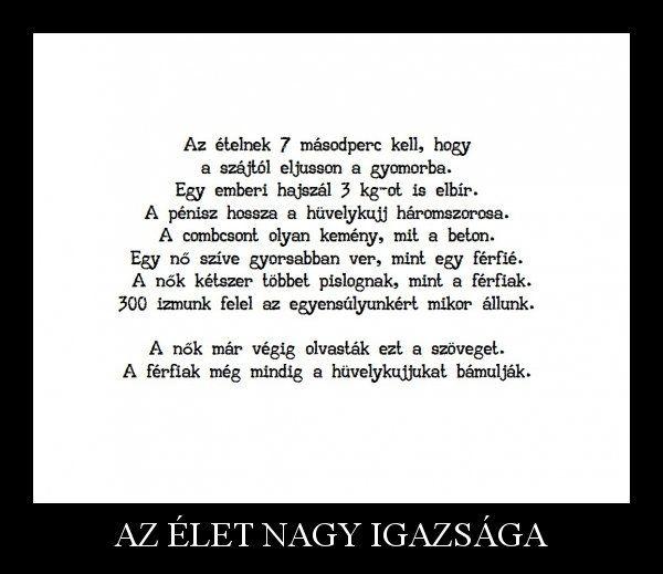 pénisz szövege)