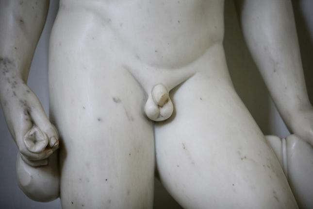 hogyan alakul ki a pénisz