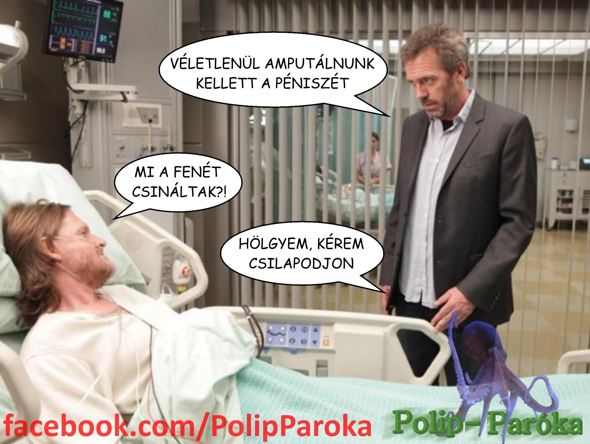 pénisz polip)