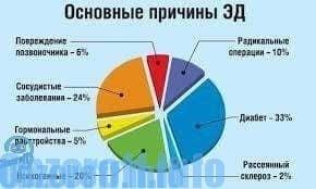 az erekció normális időtartama)
