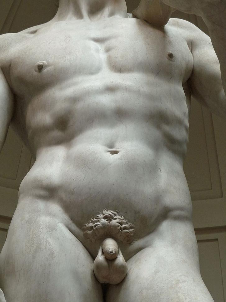 pénisz ragadós mi ez hermafroditákban a pénisz mérete