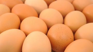 miért van több pénisz, mint tojás)