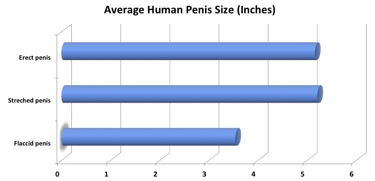 akinek az emberben a legkisebb a pénisz