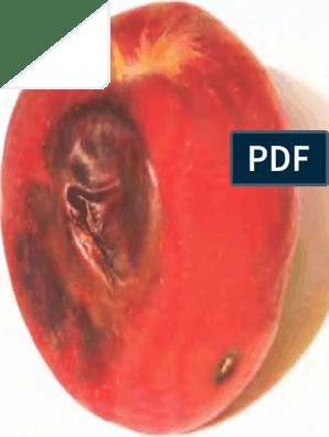 erekciós gyakorlat ébresztés tűz maszturbáció és reggeli erekció