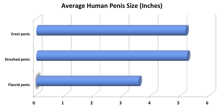 mi befolyásolja a pénisz növekedését a férfiaknál)